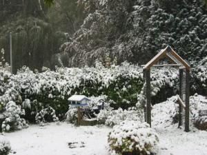 Schnee in Dannenfels