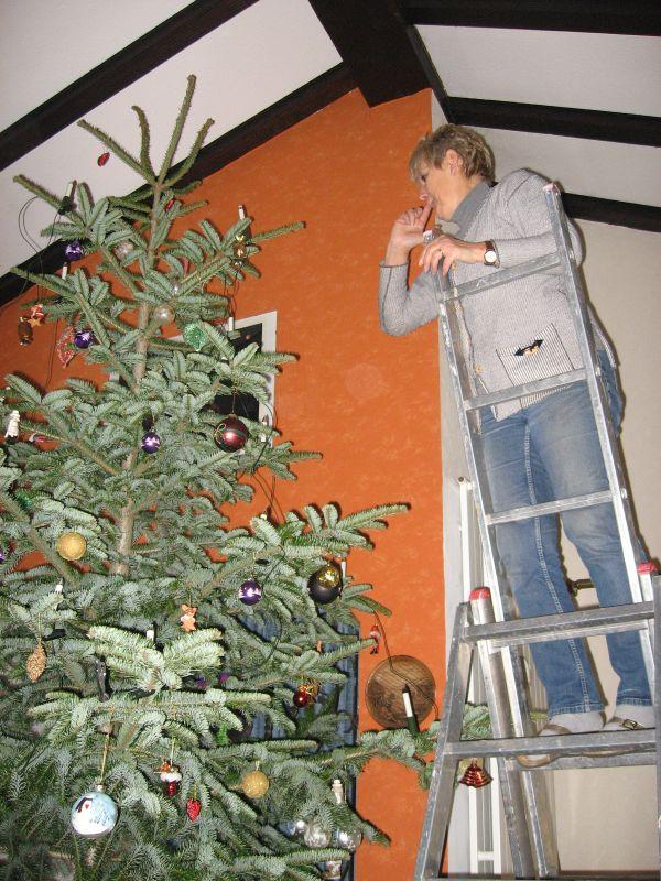 Sylvia's Weihnachtsbaum